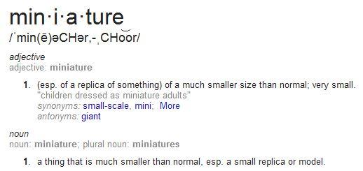 define mini